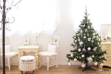 店内クリスマスツリー①360