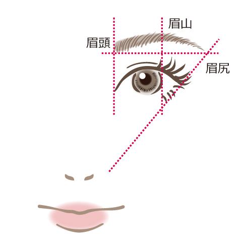 eyebrow-ratio